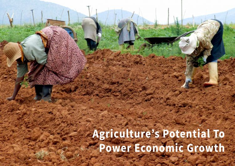 Agriculture's Potential To Power Economic Growth – African Transformation Report