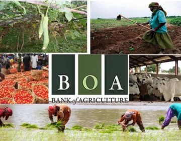 BOA and German Businessmen, Officials Sign MoU On Developing Nigeria's Agric Sector